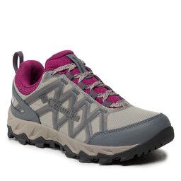 Columbia Turistiniai batai Columbia Peakfreak X2 Outdry BL0829 Kettle/Red Onion 005