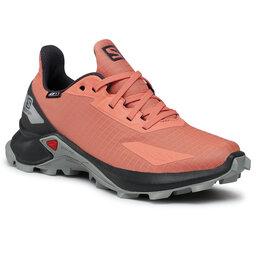 Salomon Взуття Salomon Alphacross Blast Cswp J 411227 12 0V Burnt Coral/Ebony/Quarry
