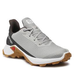 Salomon Взуття Salomon Alphacross 3 414431 26 V0 Wrought Iron/White/Cumin