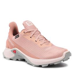Salomon Взуття Salomon Alphacross 3 Gtx W GORE-TEX 414476 20 V0 Sirocco/Rainy Day/Mocha Mousse