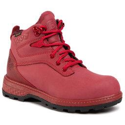 Jack Wolfskin Трекінгові черевики Jack Wolfskin Jack Ride Texapore Mid W 4035961 Red/Black