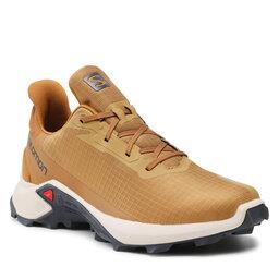 Salomon Взуття Salomon Alphacross 3 414458 26 V0 Cumin/Rainy Day/Bronze Brown
