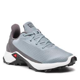 Salomon Взуття Salomon Alphacross 3 414457 26 W0 Trooper/White/Magnet